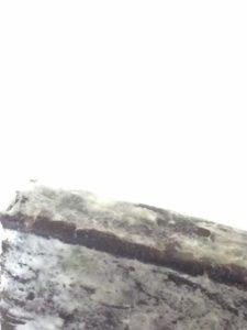 Moldy Bar 2